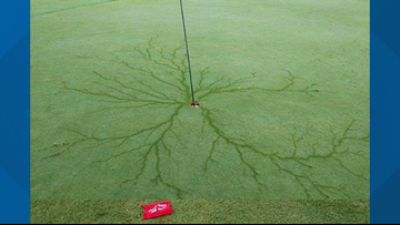 Hole in one? Lightning strike leaves mesmerizing display on golf course