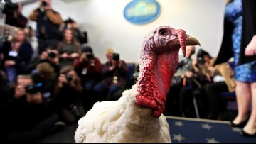 Trump grants poultry pardons to turkeys Peas and Carrots