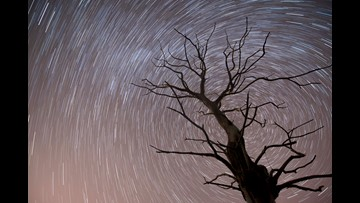 How to view the Leonid meteor showing peaking this weekend