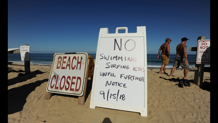 Boy attacked by shark while diving for lobsters in California