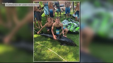 Monster sturgeon found along Minnehaha Creek in Minnesota