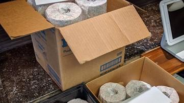 Businesses provide toilet paper bonuses amid shortage
