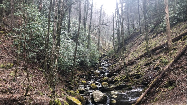 Great Smoky Mountains extends closure to prevent spread of COVID-19