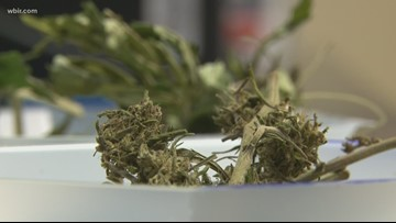 Will Tennessee legalize marijuana?   Why no recent bills have passed