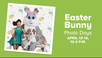 Hop Into PetSmart for Free Pictures With the Easter Bunny
