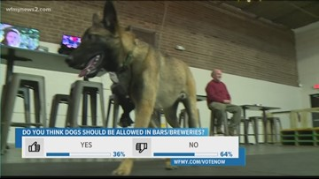Dogs Will Again be Allowed into NC Breweries Thanks to New Law