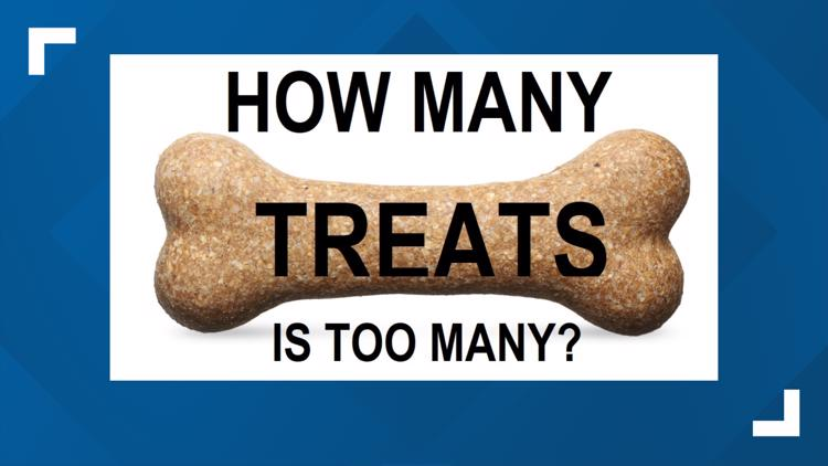 Does your pet have you trained to give them treats?