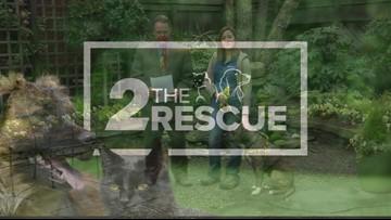 2 The Rescue: Meet Jamal