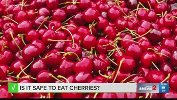 Are Worms Inside Cherries?