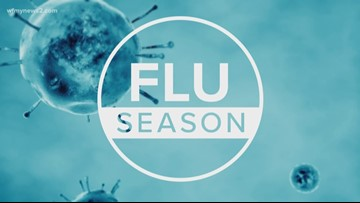 2 Your Well-Being: Fighting the flu