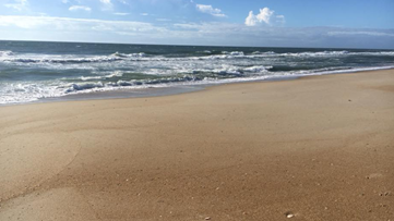 Safety Rules For Driving On The Beach At Outer Banks