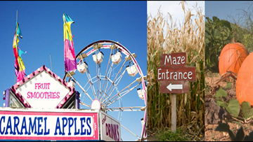 It's Fall Y'all! List of Fall Festivals, Spooky Attractions, Pumpkin Patches, Corn Mazes, Hayrides In North Carolina