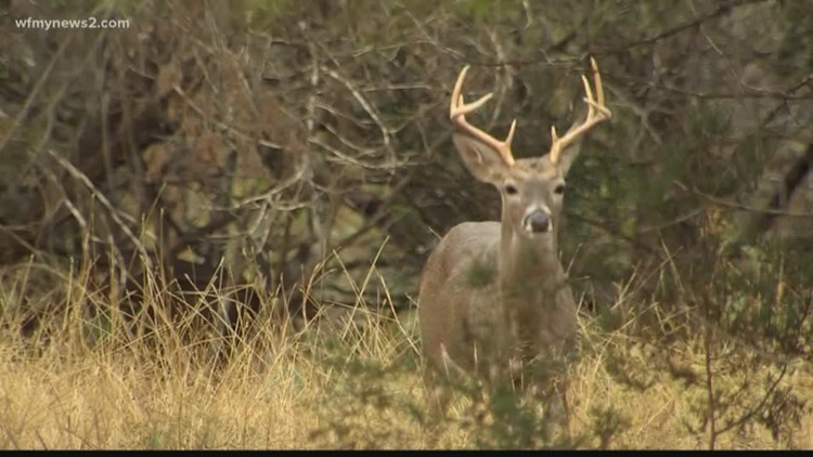 New regulation will increase cost of hunting and fishing licenses