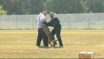 Four-Legged Secret Service Agents Get New Training Facility