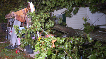 Tree Crashes Down on Greensboro Home Collapsing Patio Overhang