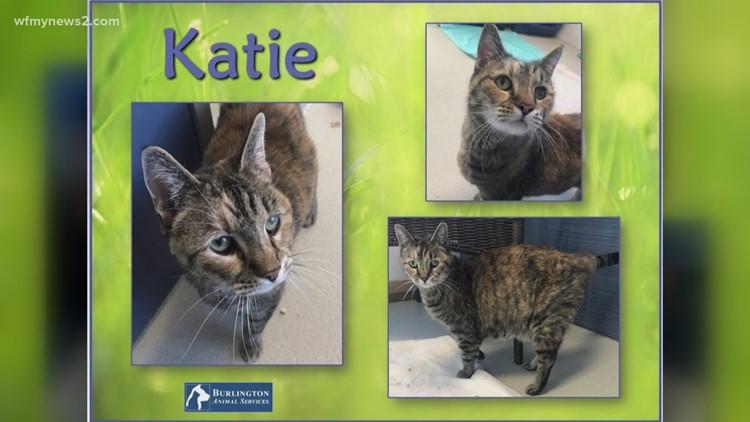 2 the Rescue: Meet Katie