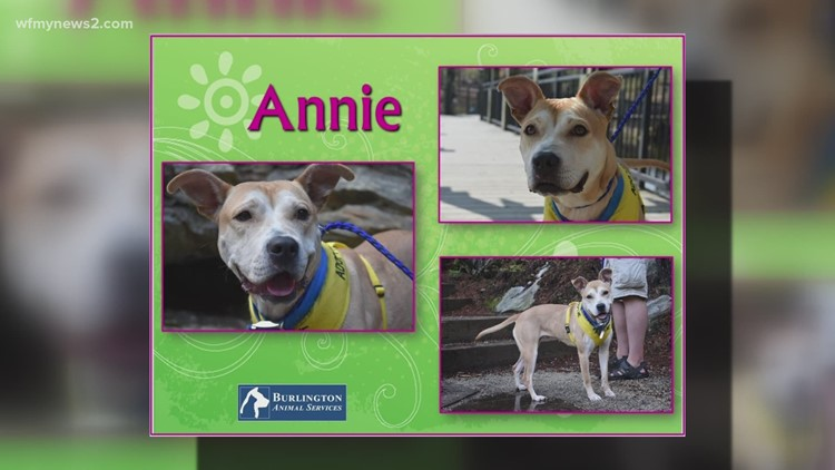 2 the Rescue: Meet Annie