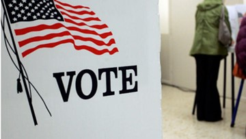 Voter Guide: What You Should Know About The Primary Election