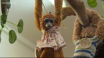 Monkey Lost At Buckingham Palace Returned Home and Brought a Special Friend