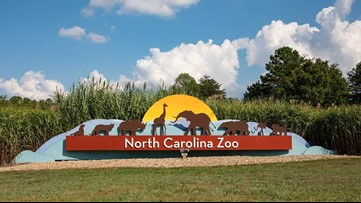 North Carolina Zoo to air series on National Geographic Wild