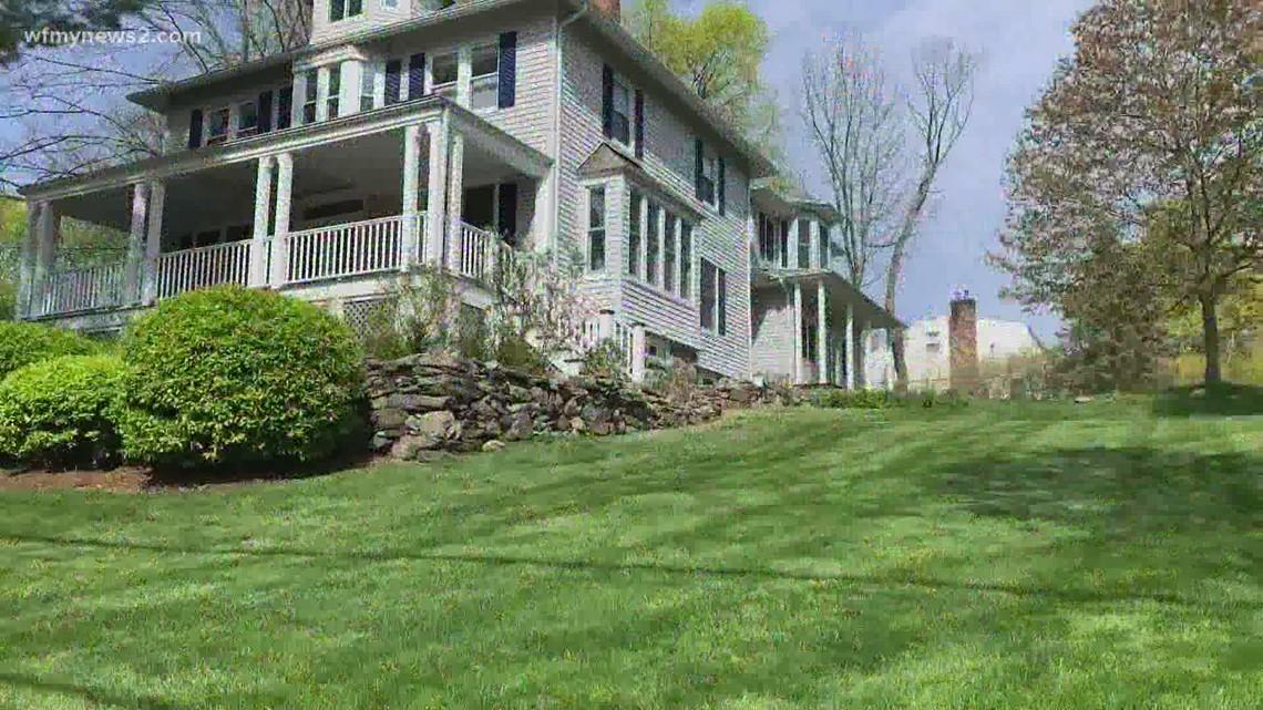A lush lawn without pesticides