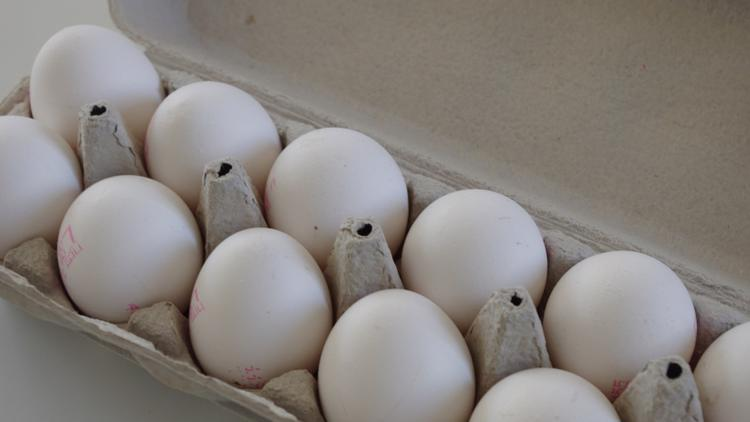 Million Eggs Recalled Due to Suspected Salmonella Contamination