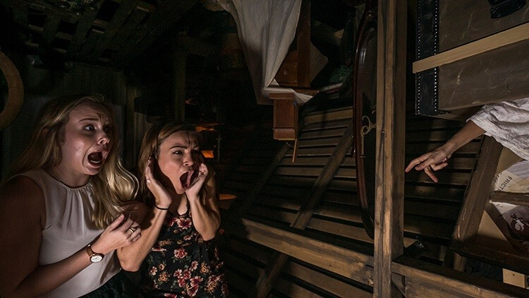 Wonderful Busch Gardens Released A Teaser Of A Brand New Howl O Scream Haunted House