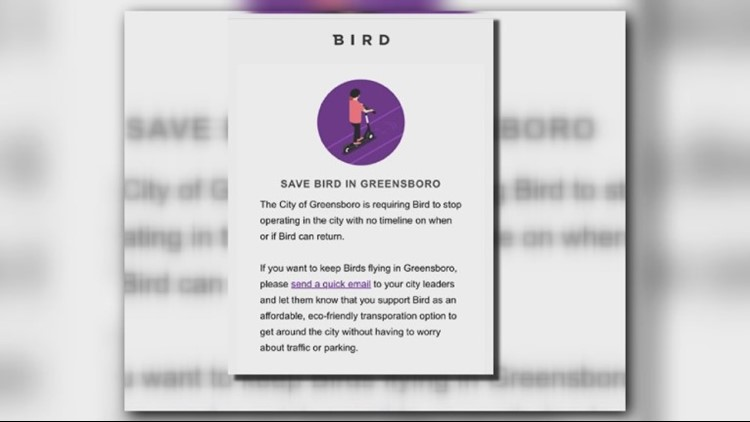 bird email for web_1536205220790.png.jpg
