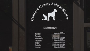Dog Bites 2-Year-Old At Guilford County Animal Shelter