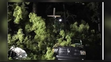 NC Man Alive After Tree Falls On Top Of His Vehicle At NC State Fair During Michael