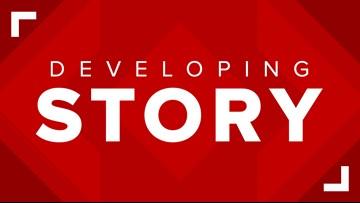 WATCH LIVE: Urgent Puppy Rescue Underway In North Houston