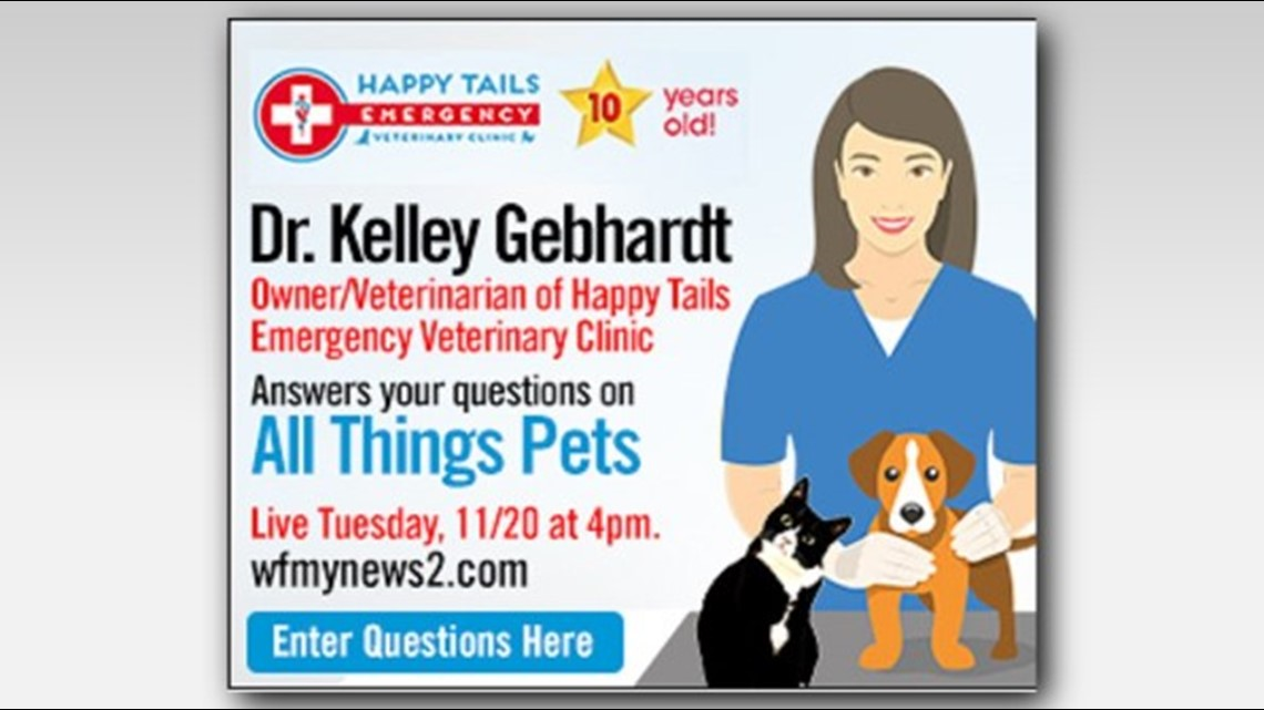 LIVE WEB CHAT | Ask The Vet: Dr. Gebhardt Taking Your Questions at 4pm Tuesday