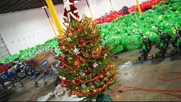 People Are Buying NC Christmas Trees On Amazon