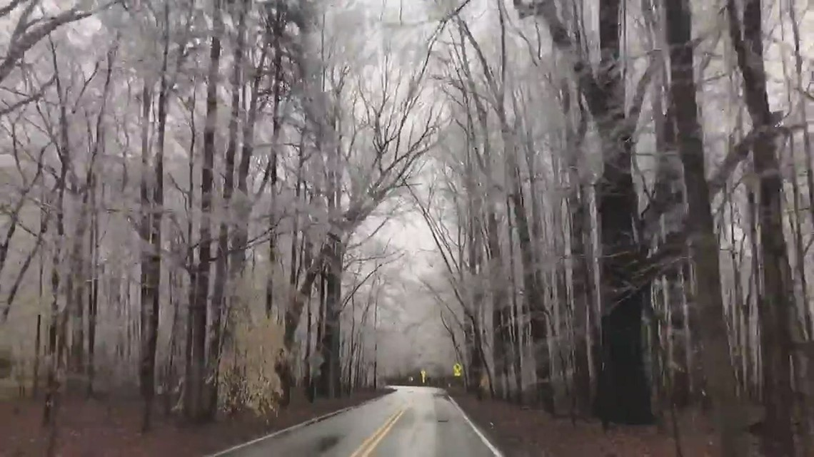 Trees covered in ice at Battleground Park