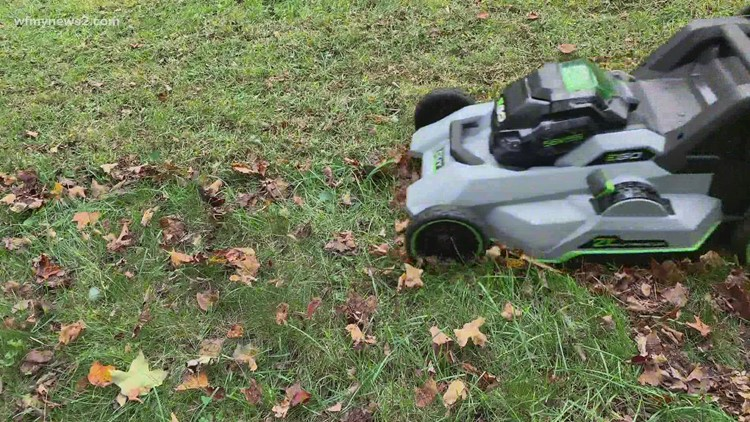 Skip raking the leaves this fall: 2 Wants to Know