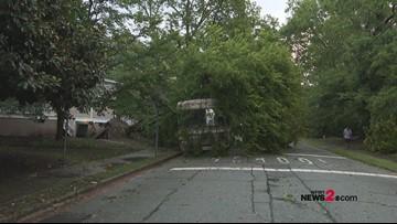 RAW VIDEO: Tree Crushes RV