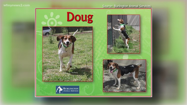 2 the Rescue: Meet Doug
