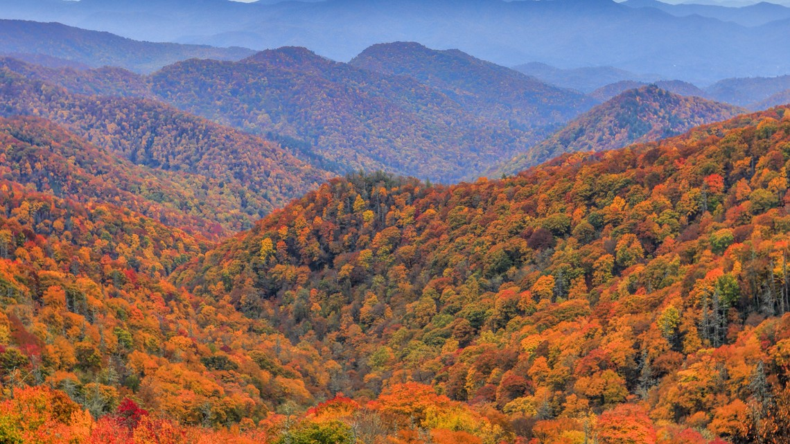 All aboard! Take a train ride excursion through the NC mountains to view the fall leaves