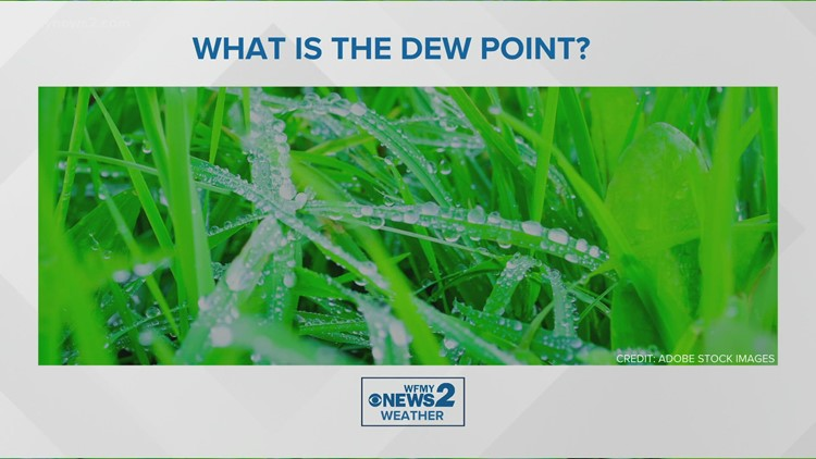 VERIFY: That sticky morning dew comes from the dew point