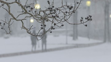 Elon University students spend Thursday afternoon soaking in much-anticipated snowfall