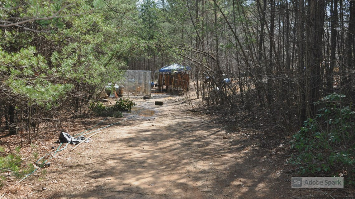 RAW: Dogs seized in possible dogfighting ring in North Carolina