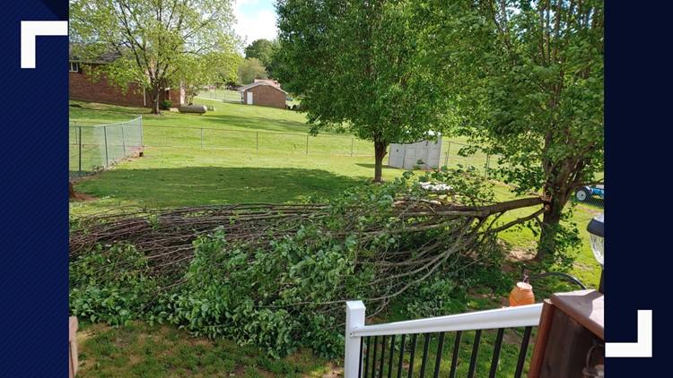 Kernersville Downed Tree