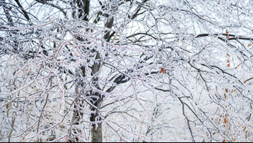 SNOW CLOSINGS | How to get a 'Snow Code,' how to enter it for closings and delays