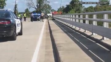 RAW VIDEO: Wilmington Police Round-Up Alligator!