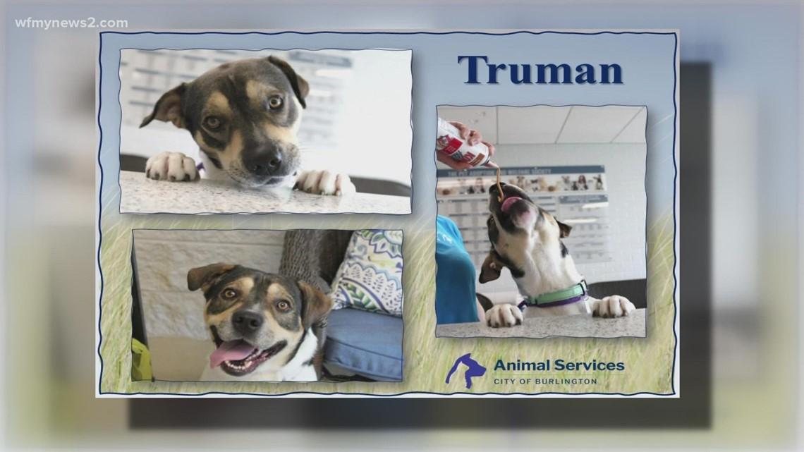2 The Rescue: Meet Truman