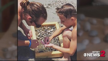 NC Man Finds Tooth of Extinct Elephant at Myrtle Beach