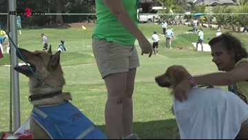 SPCA Of The Triad Brings Dogs To The Wyndham Championship