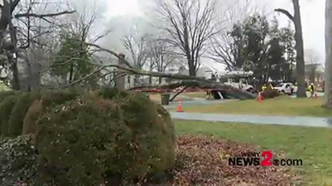 Massive tree falls in Winston-Salem