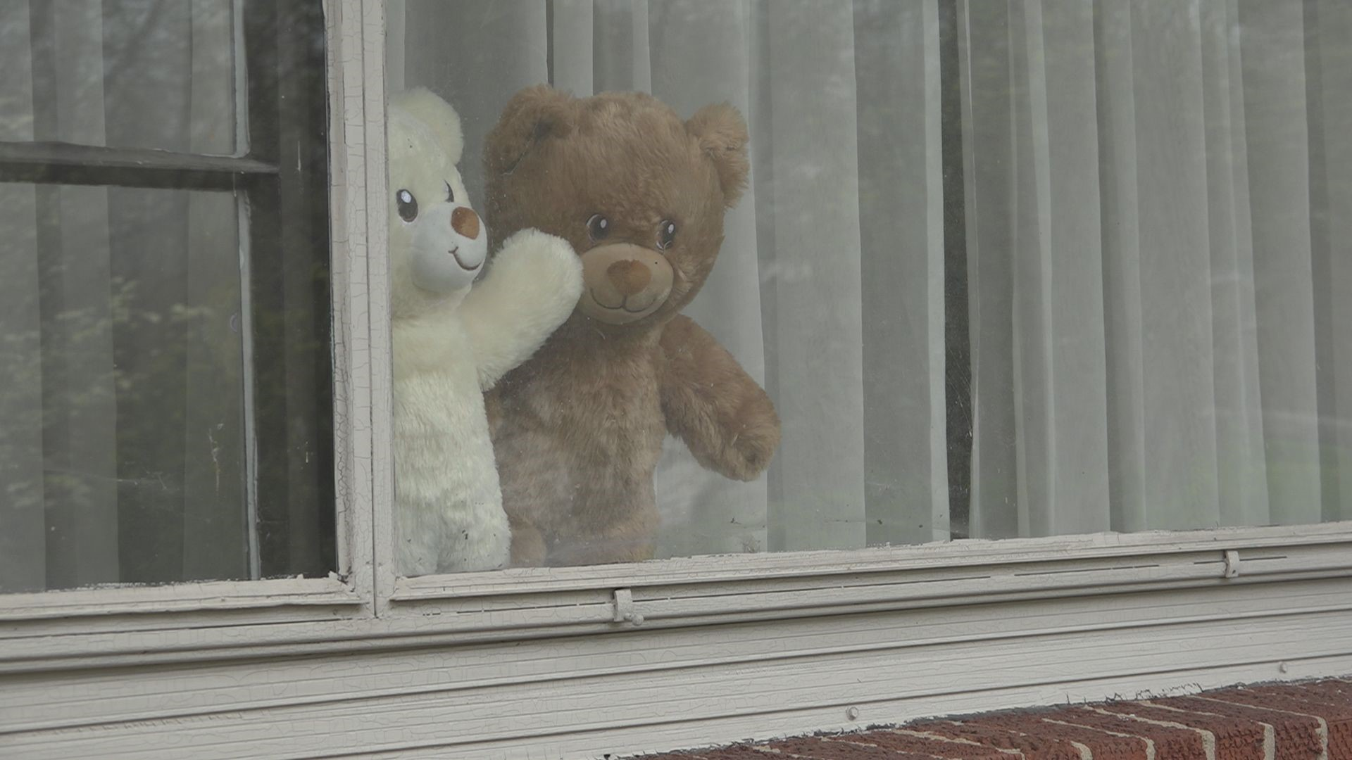 Teddy Bear Hunt Helps Kids Cope With Coronavirus Wfmynews2 Com