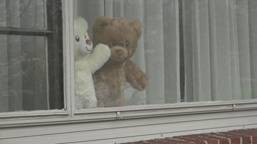 Put a teddy bear in your window to help kids cope with coronavirus